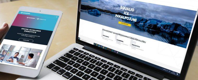 Squalio ICE pakalpojums, programmatūras aktīvu pārvaldība